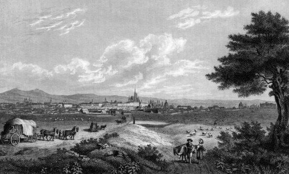 Vienna Landscape